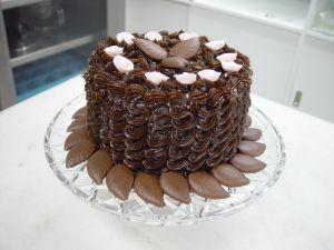 jebraweb-chocolate-cake