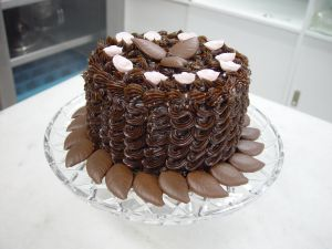 jebraweb-chocolate-cake