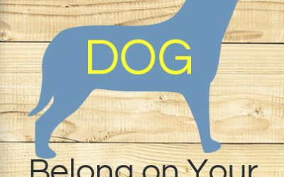 Should Your Dog Be on Your Web Site?